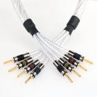 QED Genesis Silver Spiral Bi-Wire